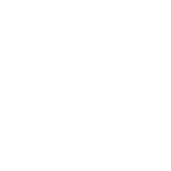 Netapp logo white